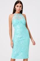 Paper Dolls Carlyle Mint Lace Midi Dress