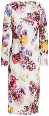 Dolce & Gabbana Floral-print Cotton-blend Lace Dress