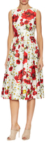 Dolce & Gabbana Cotton Floral Print Flared Dress