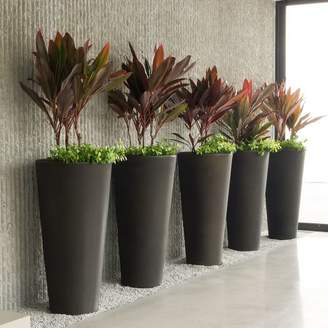 west elm Tapered Planter