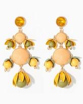 Charming charlie Budding Bounty Dangle Earrings