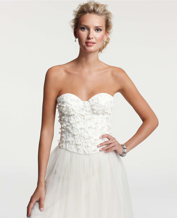 Ann Taylor Chantilly Lace Bustier