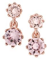 Ted Baker Women's Conolle Crystal Drop Earrings