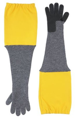 Plan C Gloves
