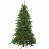 Asstd National Brand 12' Pre-Lit Frasier Fir Artificial Christmas Tree& Rolling Stand - Multi Lights