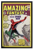 Steiner Sports Stan Lee Autographed Amazing Spider-Man Poster