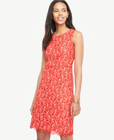 Ann Taylor Tall Two Tone Lace Sheath Dress