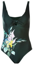Ted Baker Ted Flourish V Neck Swimsuit Womens