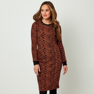 Joe Browns Snake Print Shift Dress with Crew-Neck and Long Sleeves