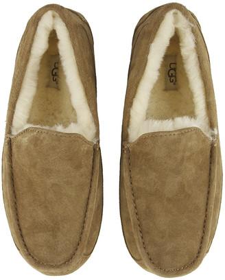 UGG Men's Ascot Slippers - Chestnut - UK 6