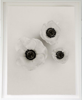 "Dawn Wolfe Design Dawn Wolfe - Anemones on Linen 54""L x 40""W x 3""D"