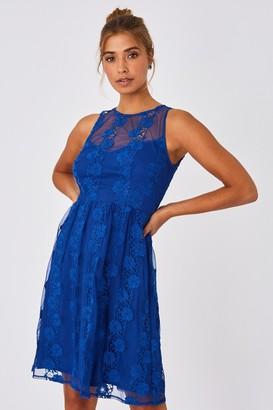 Little Mistress Lela Cerulean Blue Floral Lace Skater Dress