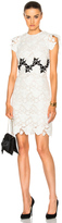 Giambattista Valli Lace Mini Dress