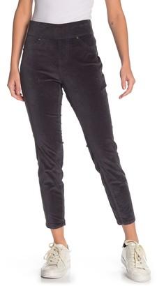 Jag Jeans Marla Velvet Leggings (Petite)