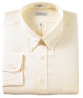 Van Heusen Big and Tall Easy Care Pinpoint Oxford Dress Shirt