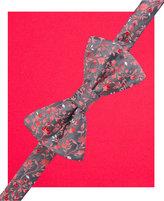 Alfani Spectrum Men's Pleasant Vine Pre-Tied Bow Tie and Pocket Square Set, Only at Macy's