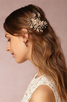 BHLDN Gypsophila Comb