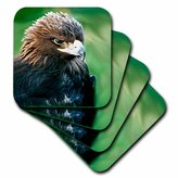 3dRose cst_646_3 Golden Eagle Ceramic Tile Coasters, Set of 4