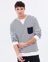 Pitt Stripe Crew-Neck Sweater