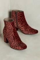 Hudson Shoes Hudson Garnett Velvet Leopard Booties