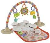 Fisher-Price My Little Snugapuppy Cuddle 'n Play Gym