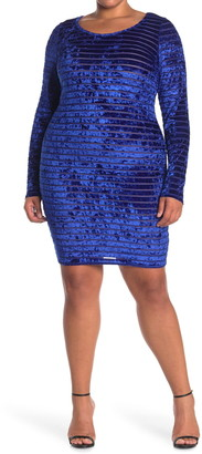 Curvy Sense Velvet Stripe Burnout Dress