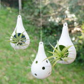 DingaDing Terrariums Hanging Ceramic Tealight Holder Air Plant Terrarium