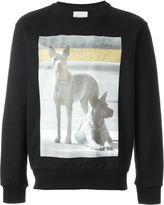 Palm Angels dog photo print sweatshirt