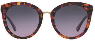 Coach HC8199D 403550 Sunglasses Purple