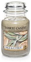 Yankee Candle Company Sage and Citrus Jar Candle