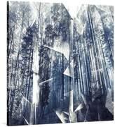 United Interiors Forest Denim Square Canvas Print, 85x85cm