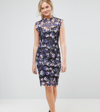 Paper Dolls Tall High Neck Floral Crochet Lace Midi Dress-Multi