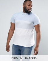 French Connection PLUS Polo Shirt with Block Stripe