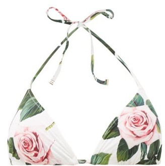 Dolce & Gabbana Rose-print Triangle Bikini Top - White Print