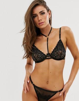 Bluebella Leta cutout lace harness detail bra in black
