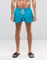 Ringspun Short Shorts