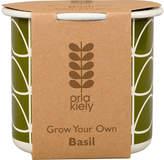 Orla Kiely Grow Your Own Basil Set