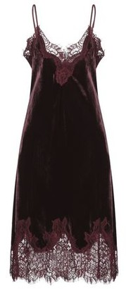 Gold Hawk Knee-length dress