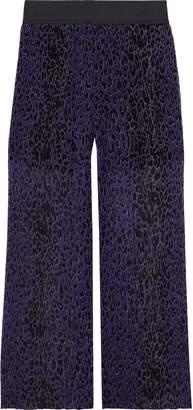 Anna Sui Leopard-print Plisse Silk-georgette Wide-leg Pants
