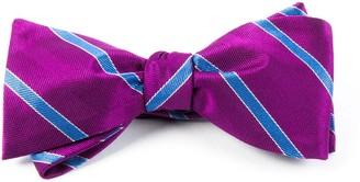 Tie Bar Pipe Dream Stripe Azalea Bow Tie