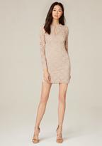 Bebe Lace Long Sleeve Dress