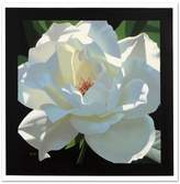 Rose In The Shadows Limited Edition Giclee on Canvas by Brian Davis