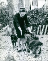 PickYourImage Vintage photo of Mrs. Bedford playing happily with her dogs.