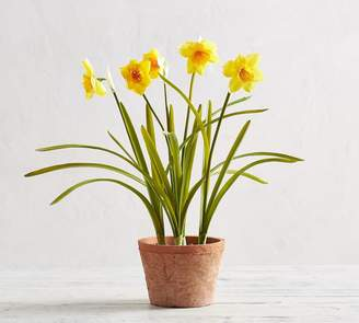 Pottery Barn Faux Potted Daffodil