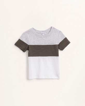 Splendid Toddler Boy Three Block Tee