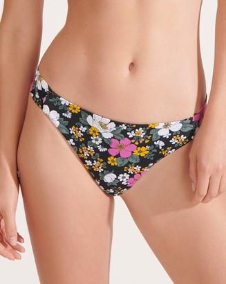 Veronica Beard Donna Bikini Bottom