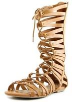 American Rag Maya Women Open Toe Synthetic Tan Gladiator Sandal.