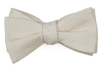 Tie Bar Dotted Spin Light Champagne Bow Tie