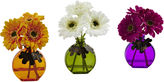 Asstd National Brand Gerber Daisy With Colored Vase Set Of 3
