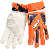 Puma EvoPOWER Protect 3 Goalkeeper Gloves